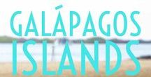 Travel: Galapagos Islands / The Galapagos Islands might just appear on everyone's bucket list and for very good reason, it looks just spectacular! Plan your Galapagos Island adventure here.