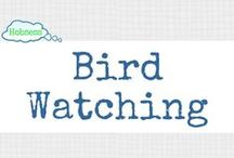 Bird Watching (OUTDOORS) / Bird watching could be your hobby OR business! Learn more at www.hobsess.com/outdoors/bird-watching. (Follow this board if you love bird watching! If you'd like to contribute, send me a Pinterest message or email at Rev@hobsess.com)