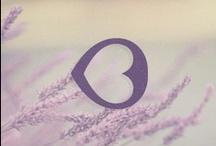logo / by Monika Ehrmann
