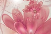 Pink / .