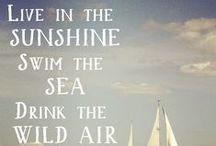 raise the black // sail