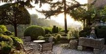 Garden Design Ideas / Inspiration for creating amazing gardens. For garden borders with the wow factor in your own backyard, try out https://www.plantingplanner.com