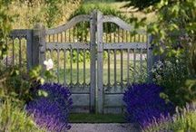 Ideas for Romantic Gardens / Archways and pergolas and flower-strewn bowers. Billowing drifts and serene colours. Paths for wandering along, benches for whispered conversations and garden sculptures to stop and linger admiringly over. For a romantic garden planting plan, tailored to your garden's soil and climate, visit https://www.plantingplanner.com