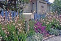 Ideas for Coastal Gardens / For a coastal garden planting plan, tailored to your garden's soil and climate, visit https://www.plantingplanner.com