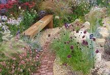 Ideas for Gravel Gardens / Low maintenance gravel gardens suit many Mediterranean plants and grasses. Use a layer of weed-suppressing, landscape fabric over the soil to keep it looking good. https://www.plantingplanner.com