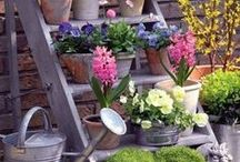 Outdoor plant stands / A collection of pots is always greater than the sum of its parts! Varying the height levels is great for adding vertical interest.