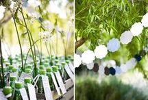 Wedding in Green / Il verde è sinonimo di buon auspicio, armonia e natura. Le possibilità per impiegare questa delicata tonalità al proprio matrimonio sono innumerevoli: come colore dell'allestimento della tavola oppure come elemento decorativo green friendly. #green #wedding