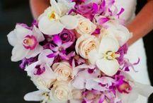 2014- Radiant Orchid / wedding colours range