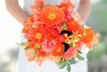 2012- Tangerine Tango / colour range weddings