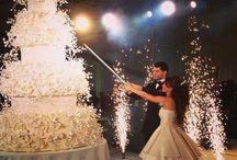 Lavish Wedding / money no object