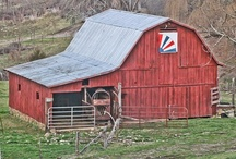 Barns / by Jackie Fry