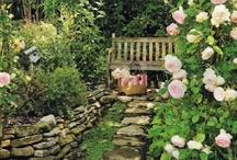 Gardens / by Jackie Fry