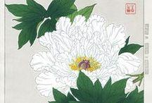 floral / botanical / nature