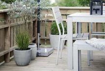 taras, ogród/ terrace, garden