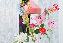 Garden / Flower