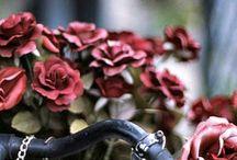 Bicycle + Flowers