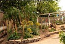 School - groen plein / inspiratie voor een groen schoolplein