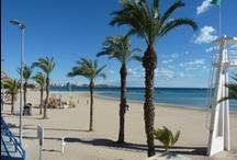 Estudio Sampere - Alicante
