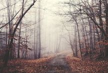 Season ☂ Autumn