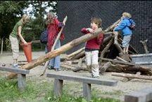Schoolplein ONS / wensen voor groen schoolplein ONS Ede