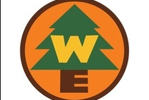Cub Scout Theme- Wilderness Explorer / by Felice Clements