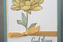 Stampin Up You've Got This / This new stamp set appears in the 15-16 SU catalog. It's got three great sentiments, a beautiful  flower and a great bakground image! I'm happy to answer any questions you may have about any of these projects. You can email me at amascio@comcast.net. Check out my blog at: www.stampwithanna.blogspot.com Shop with me at: http://www.stampinup.net/esuite/home/annamasciovecchio/