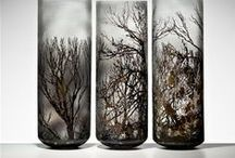 Art Glass - Glass Art