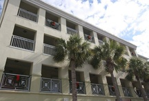 Soul Patch at Gulf Place / Call us at (855) 252-2838 for more information!