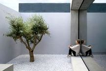 Outdoor / Garden / Landscape / by Andresa Ferreira