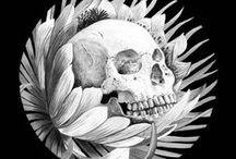 El Cortez Skull / by Mary Angel