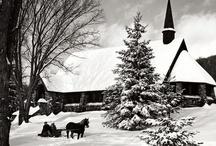 christmas / by Jenny Myers