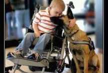 Awwwww! (Mushy Stuff) / This is the stuff that makes me tear up a little. It's all about love and compassion.