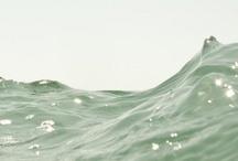 Kridati / Kridati es un término sánscrito que designa el juego de niños, adultos y animales, ,pero también es utilizado para describir el movimiento del viento, las olas e incluso la danza. / by Susana Aparicio Lardiés