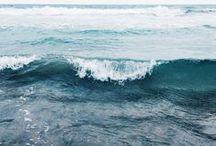 :: seas of change ::