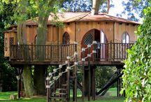Casa en los árboles