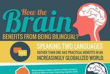 Bilingualism / Artikel über die Vorteile von Zweisprachigkeit und Mehrsprachigkeit.  Are you interested in becoming a Helen Doron teacher? http://www.helendoron.ch/lehrer/your-new-career