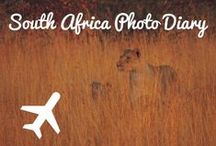South Africa / Shark Diving in Capetown, Table Mountain, Boulders Beach, Games Reserves
