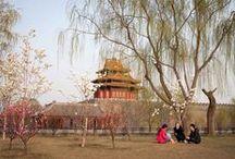 Beijing / www.tripsteri.fi/peking
