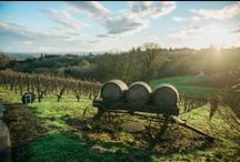 travel: Platings+Pairings / Wine & Food Travel in the United States and Worldwide