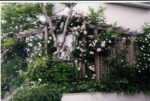 Western-style garden  (My works) / I design, it is a site that was constructed. 私がデザイン、施工した現場です。