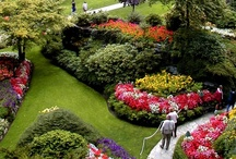 """Garden Design / Gardening - Community Board. TO CONTRIBUTE: ①Follow the Board, ②Ask to Join by comment, ③ Pin only quality pins (No Spam),  ④Invite other Pinners to Join (""""Edit Board""""), ⑤ Spread the Word – Like, Repin, Comment on pins by others."""