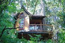 Tree houses / Swiss family Robinson tree house.! What could be cooler!
