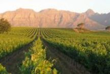 Winelands Getaways South Africa / Some of South Africa's wonderful getaway spots in the wine-growing regions