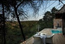 Luxury Safari Lodges South Africa / View a selection of South Africa's premier private safari lodges - heaven on earth in the wilderness!
