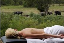 Spa and Wellness Spoils in South Africa / Here are some of the getaways in South Africa that make superb destinations for spa and wellness treatments