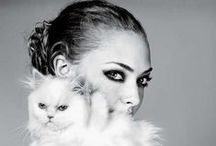 Fashion Animals / Some people may think fashion is against animals, not always. Pictures to believe!