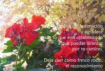¡Muchas gracias! ;0) -Thank you