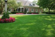Lush Lawns / Beautiful, healthy lawns in Chicagoland.