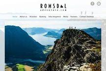 Våre kunders nettsidedesign / Our clients website design / Våre dyktige designere utformer flotte sider for Idiums kunder. Some of the work of our great designers.