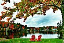Fall Foliage. / Autumn on the lake.